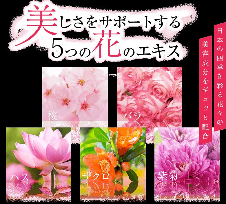 美しさをサポートする5つの花のエキス 日本の四季を彩る花々の美容成分をギュッと配合